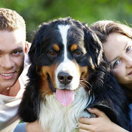 Cursusaanbod Happydog Barneveld